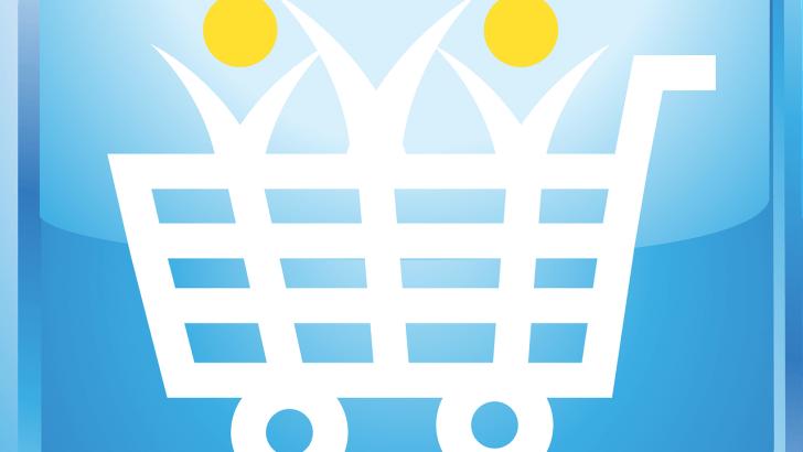 Zakupy online czy tradycyjne?