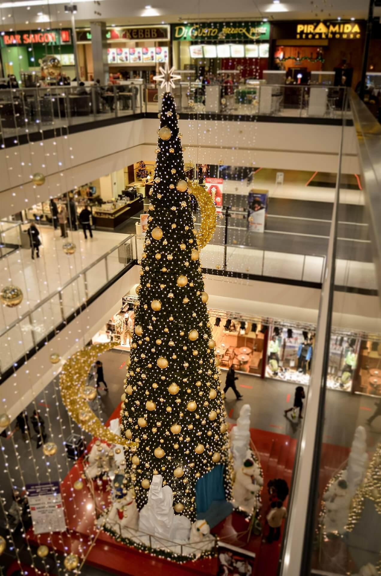 christmas-tree-427971_1920